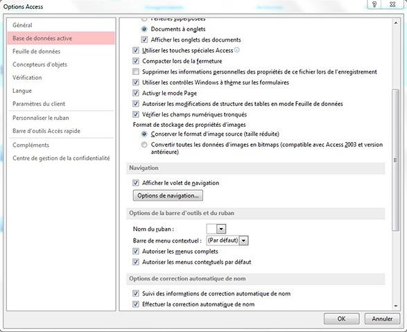 Fenêtre Options Access groupe Navigation