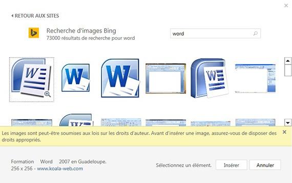 Fenêtre d'insertion d'image en ligne